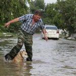 A local resident and a dog cross a flooded street in the town of Krymsk in Krasnodar region, southern Russia, July 8, 2012. REUTERS/Eduard Korniyenko