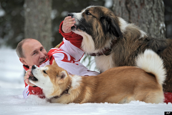 In this March 24, 2013 photo, distributed by RIA Novosti Agency on Wednesday, April 10, 2013, Russian President Vladimir Putin poses for the camera as he  plays with his dogs Yume, an Akito-Inu, front, and Buffy, a Bulgarian Shepherd in an undisclosed location of Moscow region.(AP Photo/RIA Novosti, Alexei Druzhinin, Presidential Press Service)