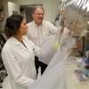Dr. Jeffrey Gordon and graduate student Vanessa Ridaura