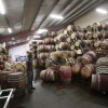 Man surveys fallen wine barrels after a 6.0 earthquake in Napa